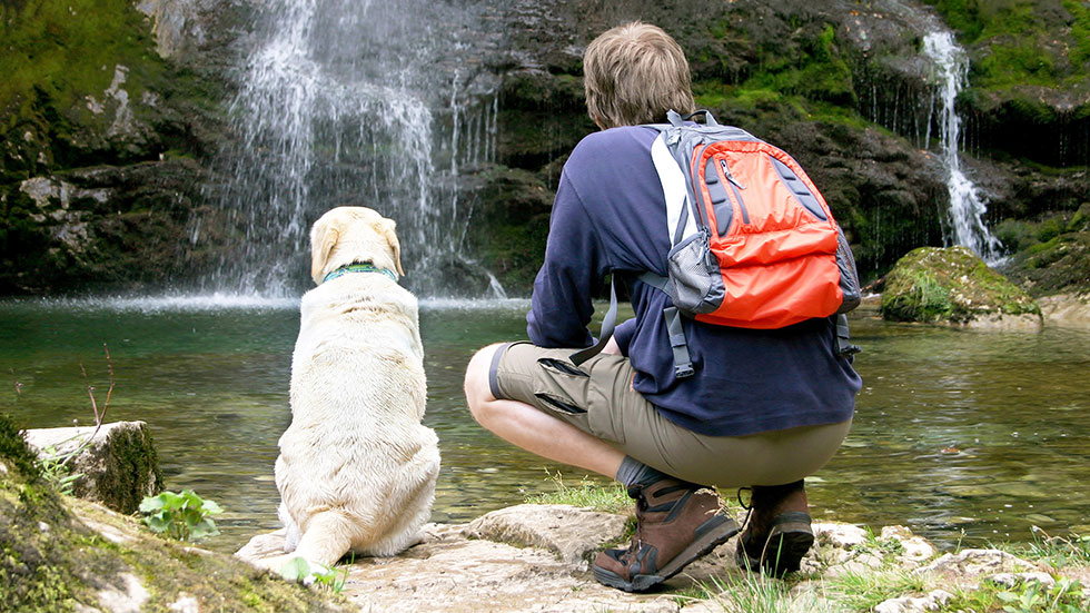Check Your Dog Health While Hiking